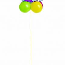 Birthday Bubble